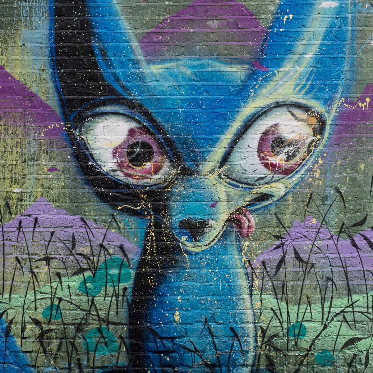 London camden himbad graffiti